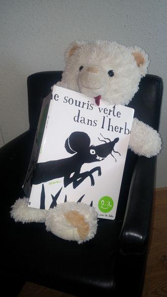 Une souris verte de Thierry Dedieu