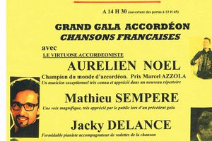 Le grand gala de l'accordéon