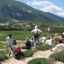 Initiative en Pays A3V : Comprendre l'évolution des paysages