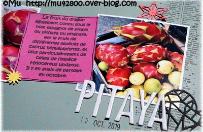 [ page ] PITAYA ou fruits du dragon