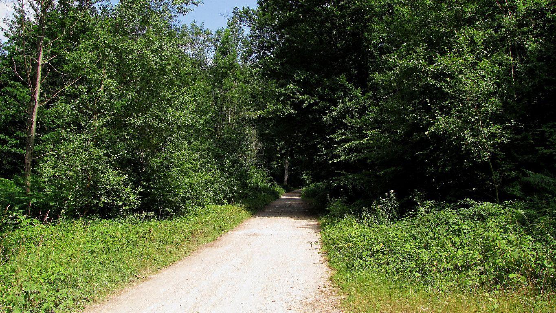 le carrefour de Tracy-le-Mont