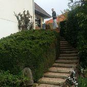 Le murmure d'une fontaine. - Création de jardins d'inspiration japonaise