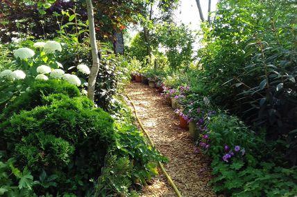 """""""Range tes tuyaux"""" L'arrosage  au jardin des violettes."""