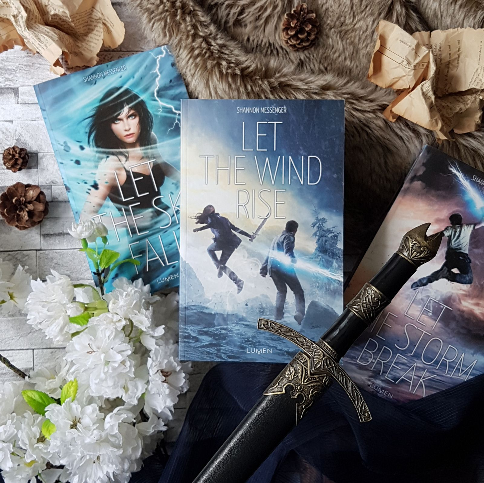 Sky Fall, tome 3 : Let the Wind Rise - Shannon Messenger