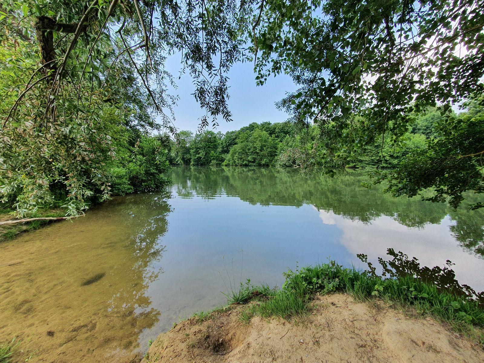 Le long de la Marne, à Sarry