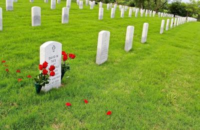 -5- أماندا قفزت إلي من القبر