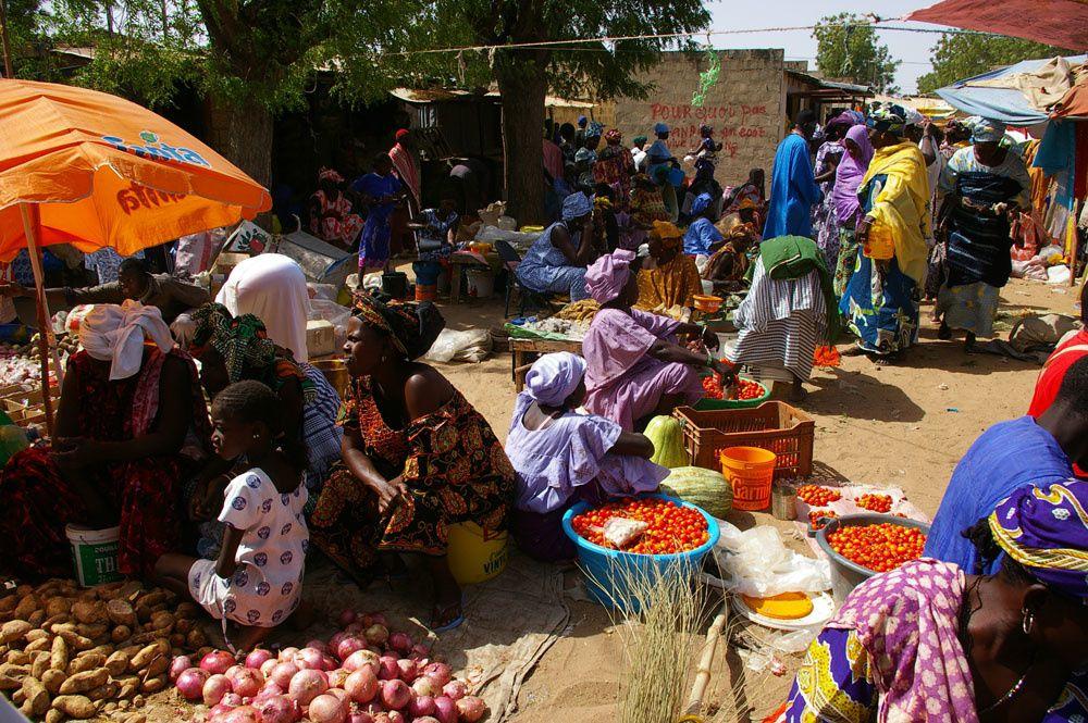 Album - Sénégal, mais pas seulement...