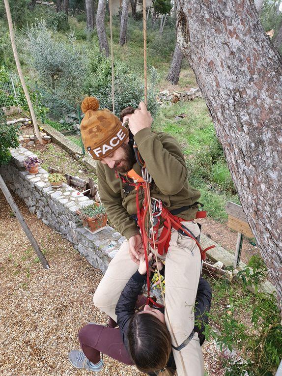 initiation dans l'arbre