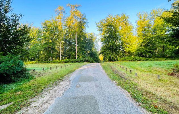 carrefour_Route de Chavigny_Allée Royale
