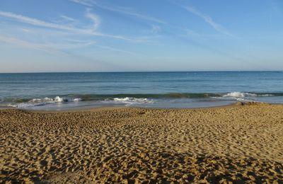 12ème jour Saint  Vincent sur Mer à l'aiguillon sur mer