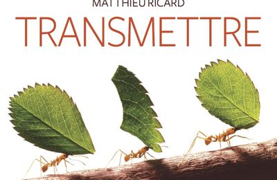 Transmettre (collectif)