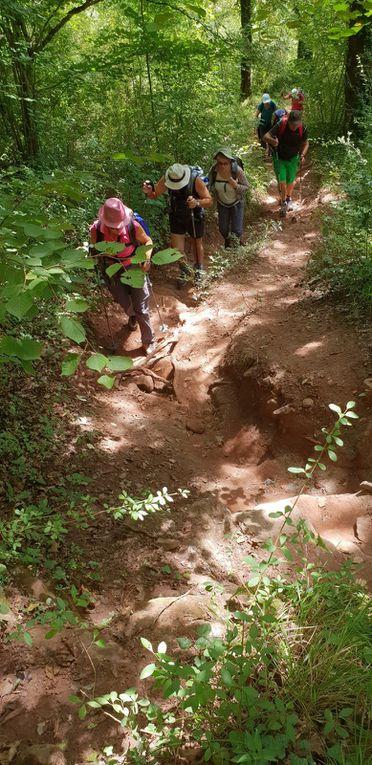Montée difficile vers le causse du Briffoul avec un sentier très raviné.