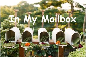 In My Mailbox (354)