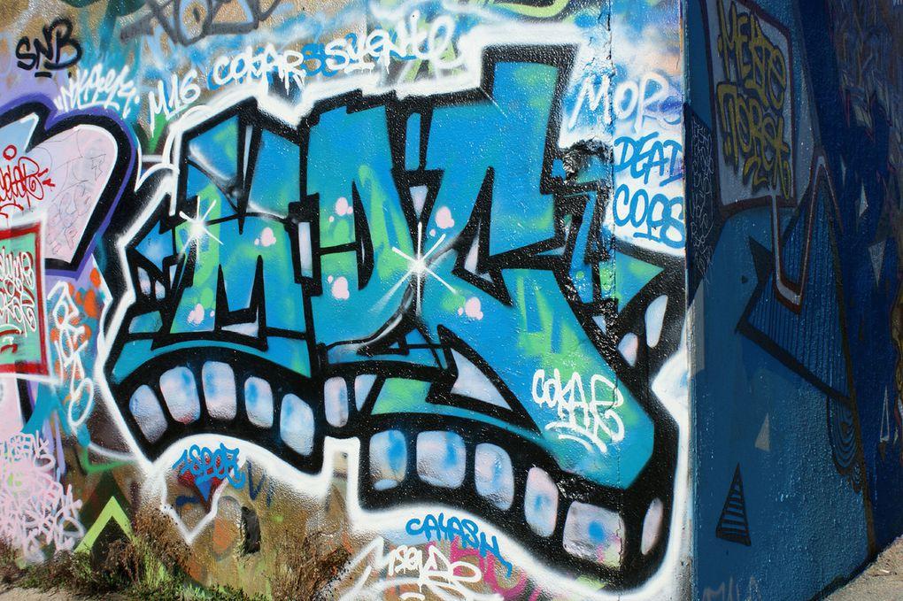 Album - Graffitis-IVRY-sur-seine-Tom-003