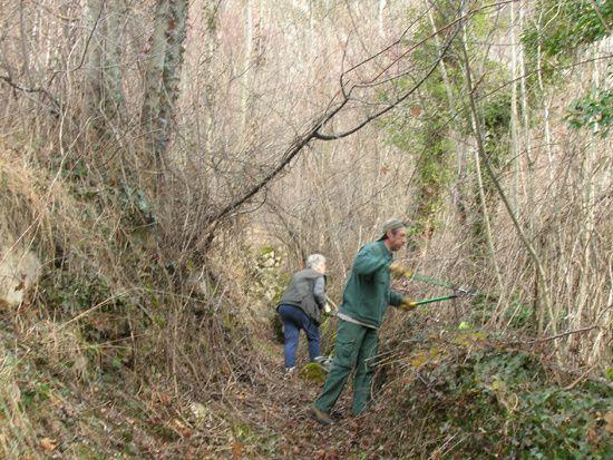 L'Association Vèbre Chemins Faisant s'est retrouvée ce samedi 23 janvier 2010 afin d'entretenir le chemin du Carrelot et le début du chemin menant à Urs