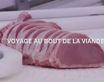 Documentaire - Voyage au bout de la viande