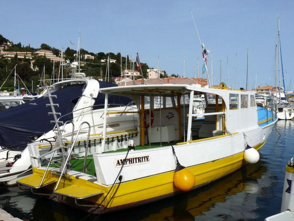AMPHITRITE , Navire d'un club de plongée