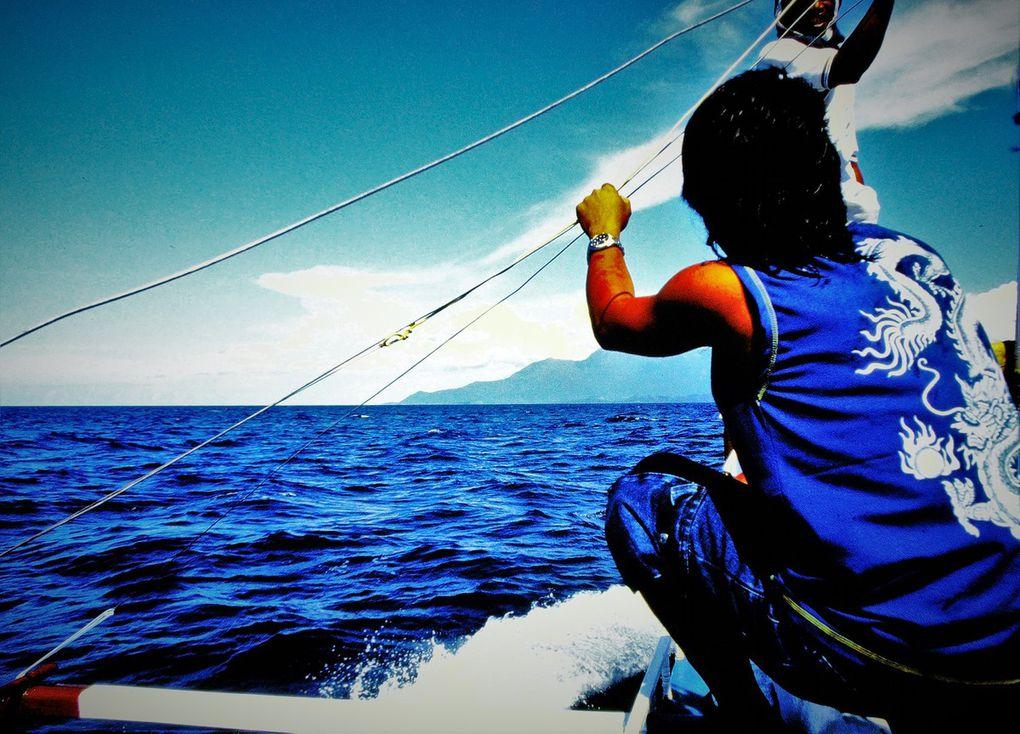 On l'appelait entre nous l'île de King Kong, parce qu'on aurait dit que ses parois montagneuses incroyablement abruptes ( leur sommet à 2050 mètres n'a été escaladé pour la première fois qu'en 1982 ) étaient en carton pâte et auraient bien pu abriter le charmant grand singe. Avant d'arriver à bon port, on affronte entre les îles des courants impressionnants, on passe au-dessus de fonds de plus de mille mètres. C'est dans cette mer de Sibuyan que repose par le fond  le plus grand cuirassé jamais construit, le japonais Musashi , dont l'épave de 263 mètres de long n'a été retrouvée qu'en 2015. En octobre 1944, après avoir été torpillé et bombardé par les Américains, il a coulé, emportant avec lui 1023 marins. Sibuyan est aujourd'hui une île paisible de pêcheurs, comptant des spots d'apnée et de plongée renommés.