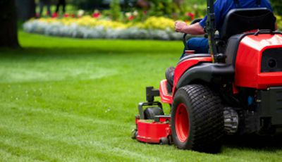 Renovate Your Lawn Beautifully With Lawn Care And Maintenance Services