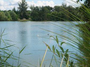 Un endroit magique, le parc des oiseaux à Villard les Dombes près de Lyon