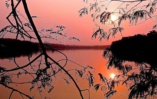 Guatemala : lever de soleil à Tikal.