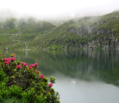 14 juin 2020 : le lac de Peyrelade (1919 m)