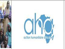 L'ONG AHA redonne le sourire aux villages affectées par les attaques de Boko Haram