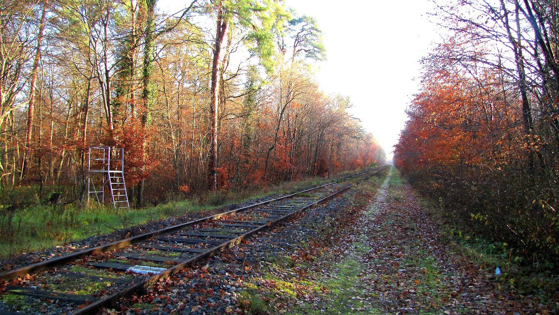 carrefour_ancienne voie ferrée_Route de la Forte Haie