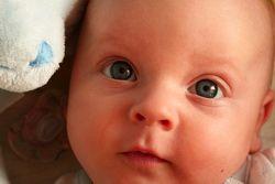 L'impuissance des bébés - Brigitte Denis