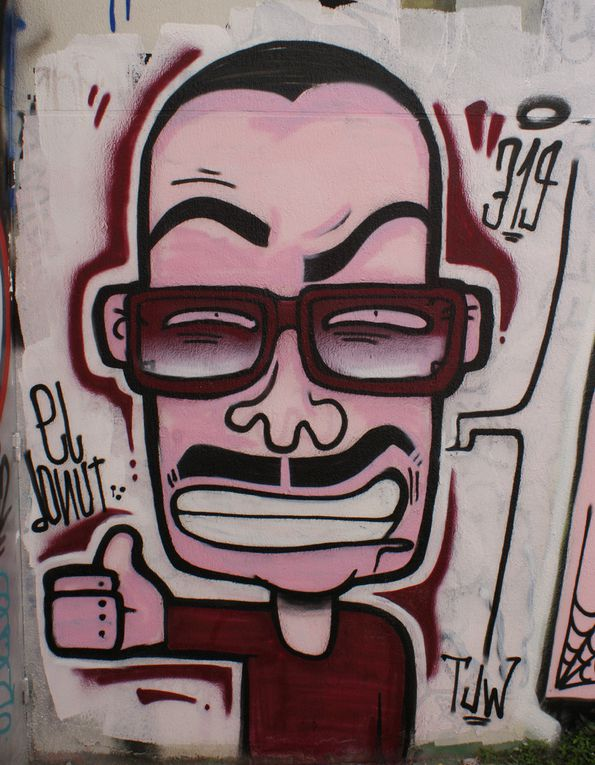 Album - Graffitis-Paris-divers-Tom-016