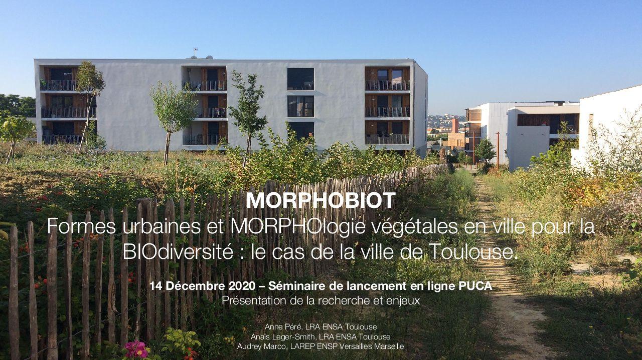 Etude MorphobioT