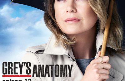 Grey's anatomy [saison 12] de Shonda RHIMES