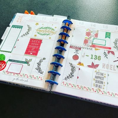 Plan with Me: Classic happy planner_ Semaine 33 et 34