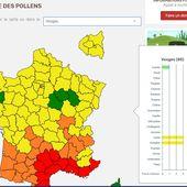 Vosges - Les allergies aux pollens sont déjà de retour ! - Epinal infos