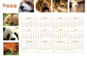 Calendrier annuel animaux