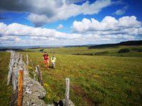 Un nouvel épisode du Off de Ouf : L'Heureux Tour en Aubrac et ses 178 km