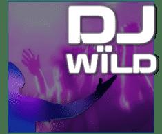 machine a sous en ligne DJ Wild logiciel ELK Studios