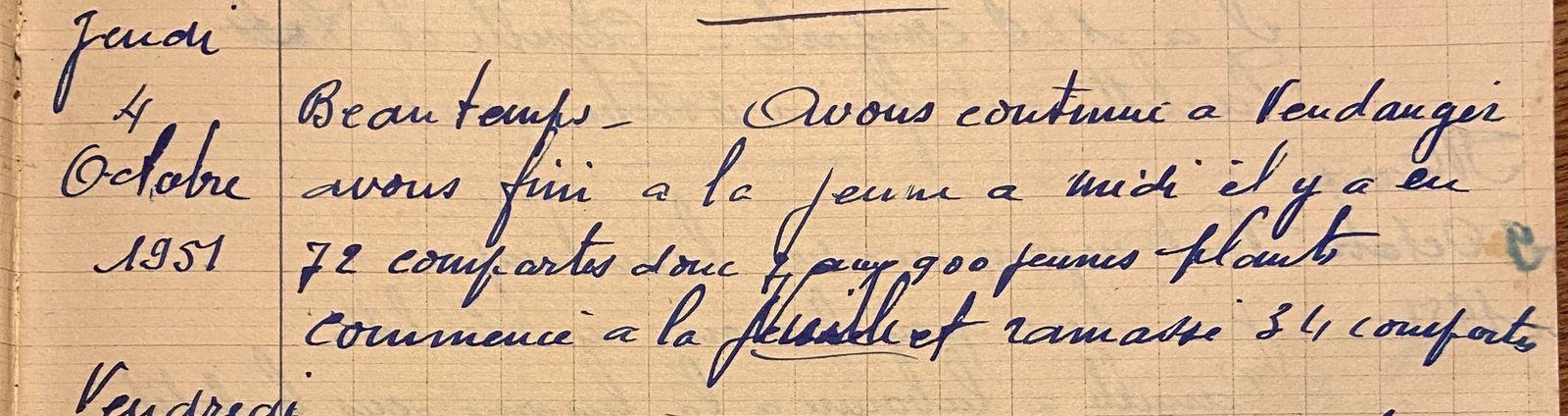 Jeudi 4 octobre 1951 - continuer à vendanger
