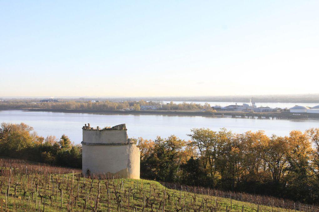 Autour de Bourg sur Gironde le 1er décembre
