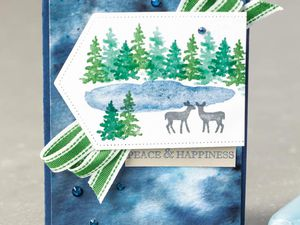 Stampin'Up!  Snow Front du catalogue hiver/Noel 2019