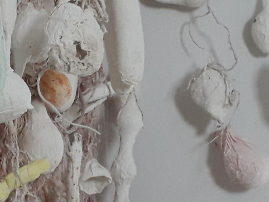 Graines et racines en plâtre sont suspendues du plafond