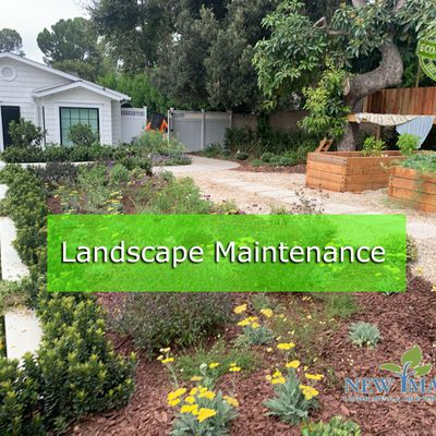 4 Easy Tips for Professional Landscape Maintenance In Your Home