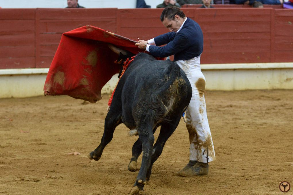 Photos, Vuelta a los Toros.
