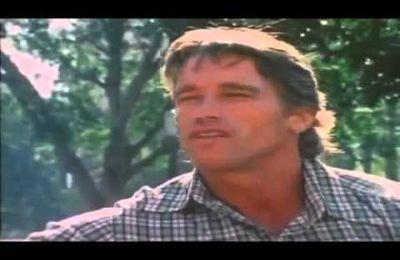 Arnold Comeback - Total Rebuild