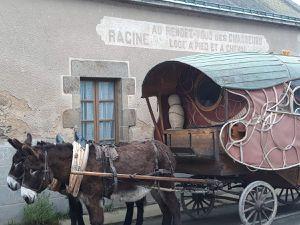 Rencontre avec une famille d'éleveurs de percherons. Deux jours ensemble et une découverte pour moi de ce milieu où les chevaux voyagent en avion, vendus en Chine et aux quatre coins du monde. Contrastes de ce coin de Mayenne, de ce lieu de vie tout modeste et de cette réputation mondiale.