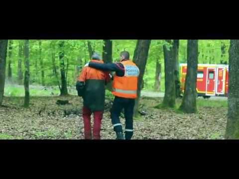 Les accidents de Bûcheronnage - Vidéo n°2 - La chute d'arbre sur une personne