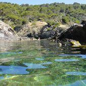 Méditerranée 2014 : Presqu'île de Giens - Randonnées kayak : les balades de Yanike et de Rabiou II