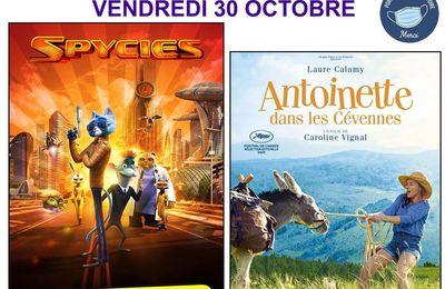 Cinéma de pays le 30 octobre St André les Alpes