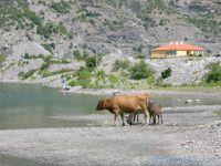 Koman (Albanie en camping-car)