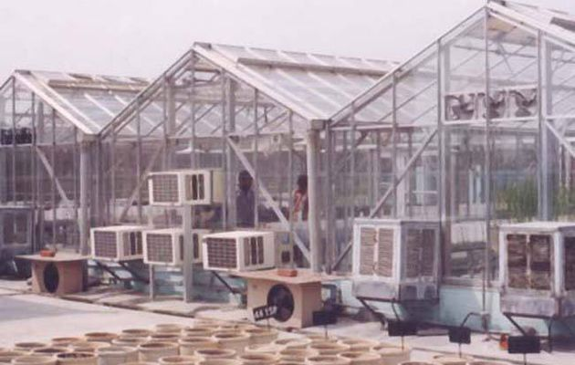 Saveer Biotech - The Leading Greenhouse Supplier In India